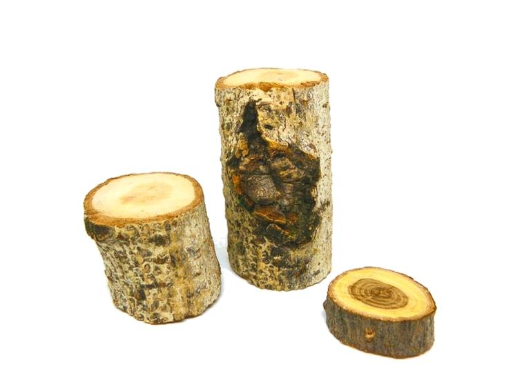 tocones y rodajas de madera para hacer portalapiceros rustico