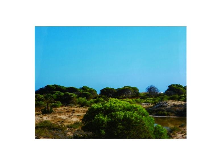 foto de un paisaje costero