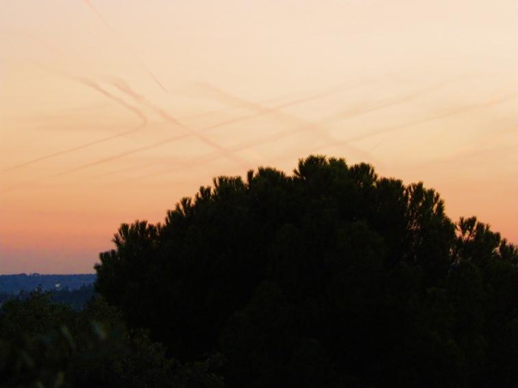 monte de el pardo arañazos en el cielo