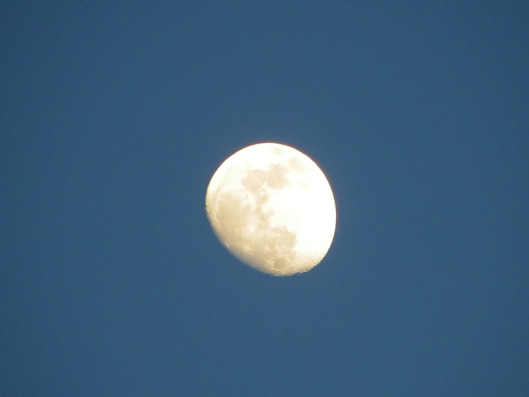 monte de el pardo vista de la luna en el ocaso