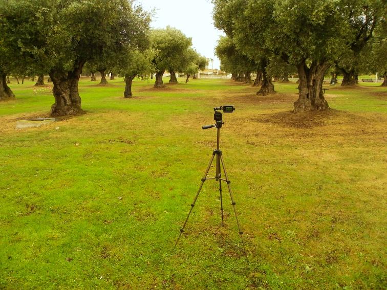 time lapse 360 grabado en invierno en el parque juan carlos I