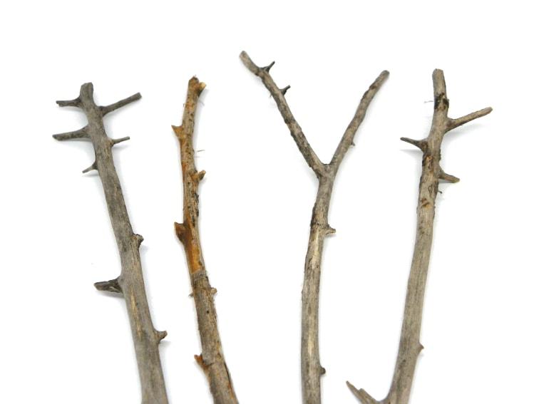 ramas secas para hacer macetero colgante