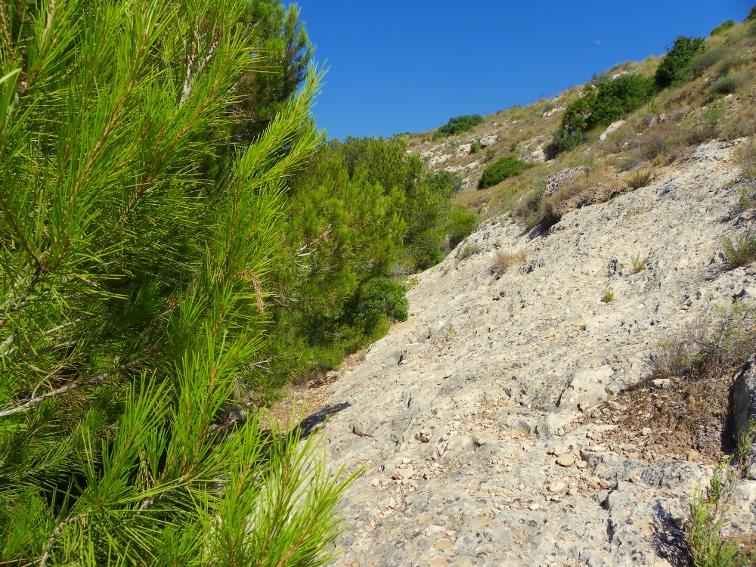 continuacion del camino por una ladera en el interior del barranco de la tia amalia santa pola