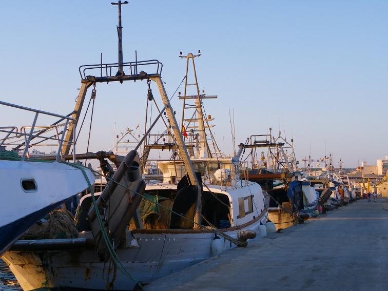 flota de barcos pesqueros en el puerto de santa pola