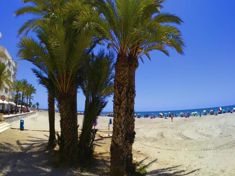 vista de la playa de levante santa pola