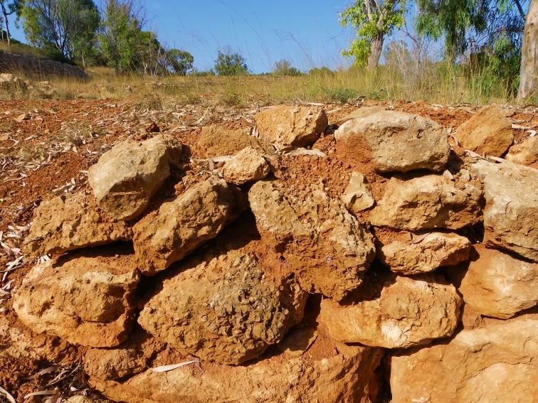 restos de un muro con rocas que tienen fosiles en la fulla rotja sierra de santa pola