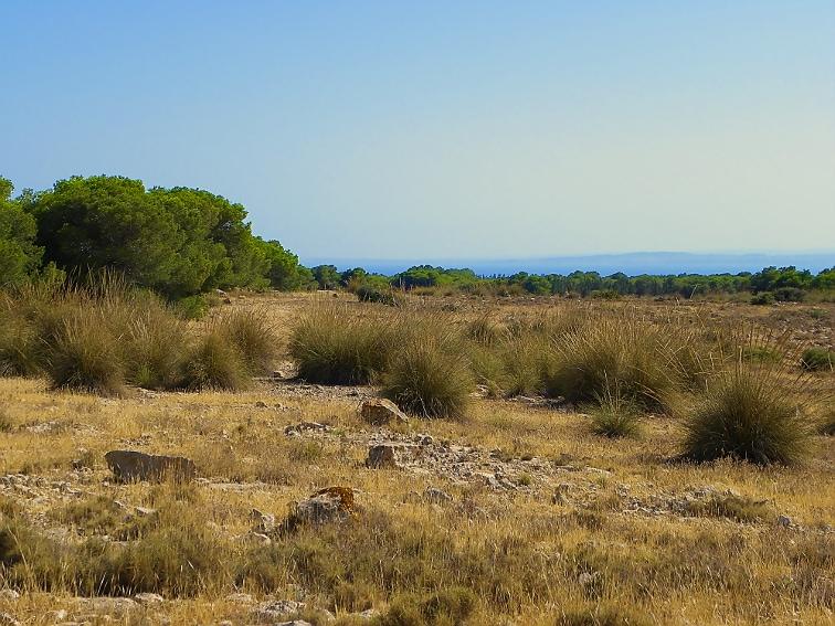 vista del mar nada mas salir del barranco de la tia amalia en la sierra de santa pola