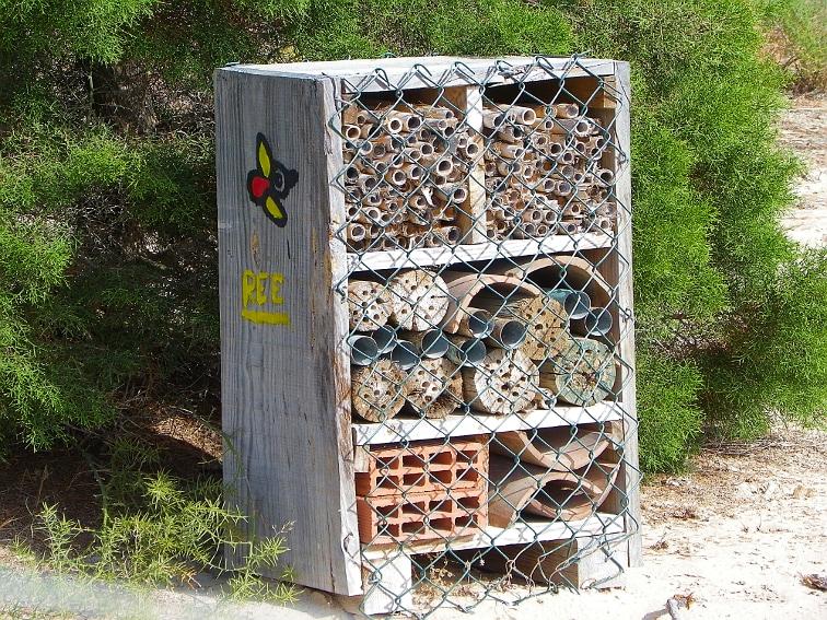 refugio para insectos beneficiosos en el paraue natural de las salinas de santa pola