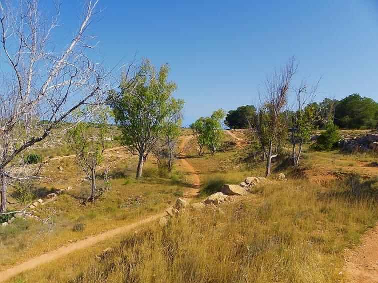 senderos en el paraje de la fulla rotja en la sierra de santa pola