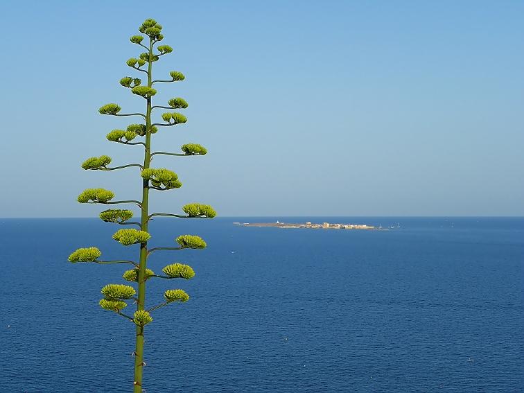 vista de de la isla de tabarca desde la torre vigia de escaletes cabo de santa pola