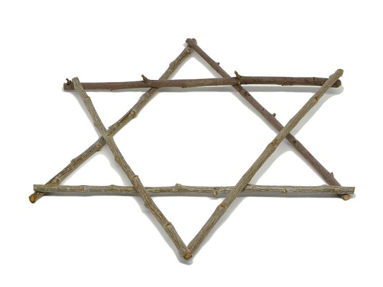 estrella hecha con seis ramas secas