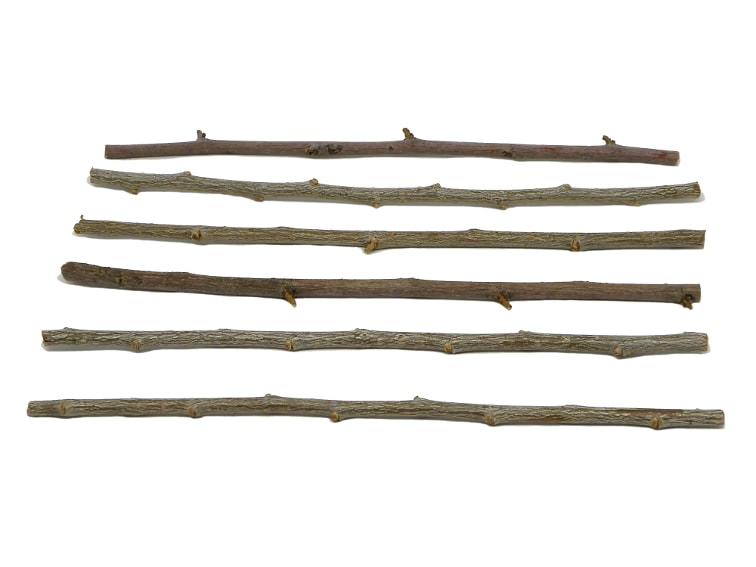 seis ramas secas para hacer estrella decorativa