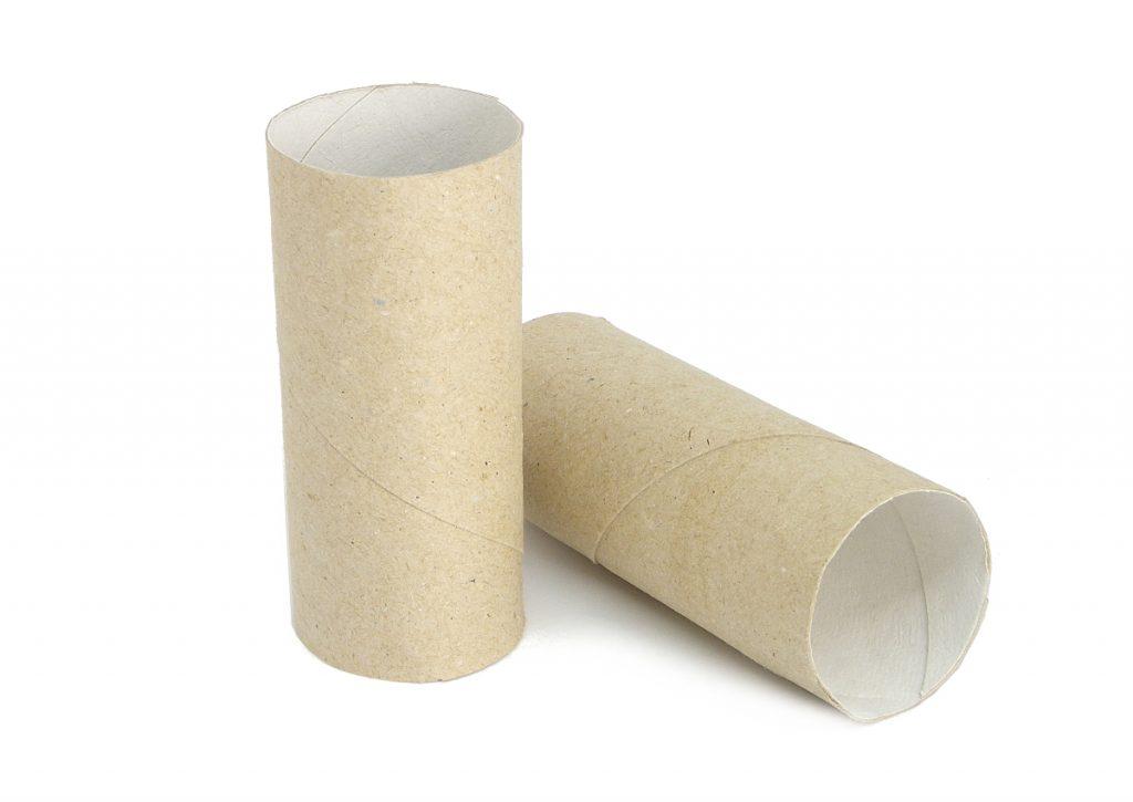rollos de carton del papel higienico para hacer dragon de juguete