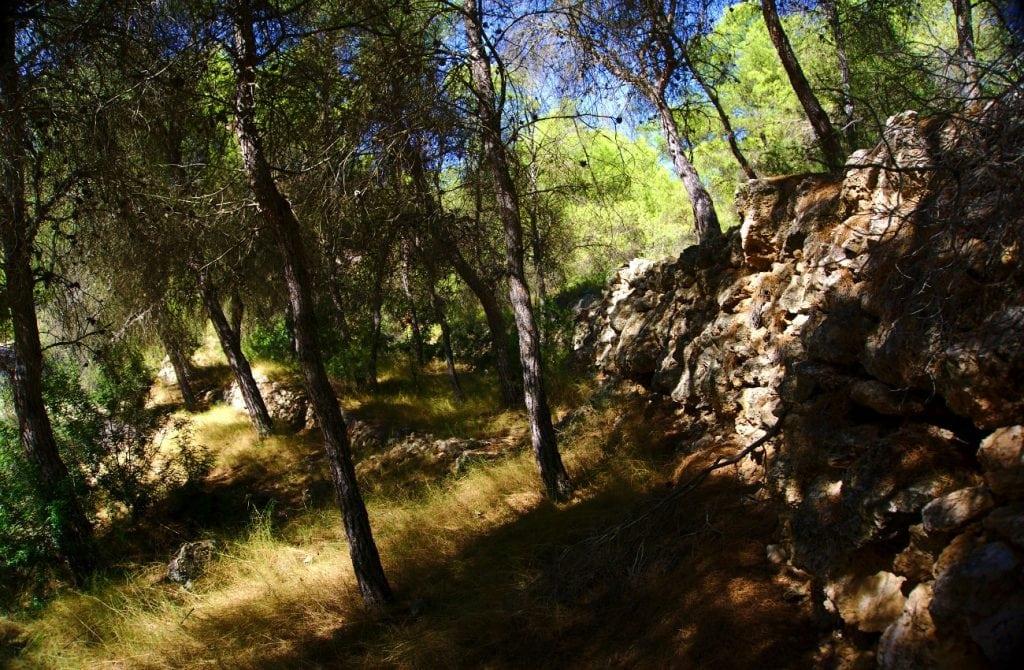 bancada de piedras escalonadas en el interior del barranco de paco mañaco santa pola