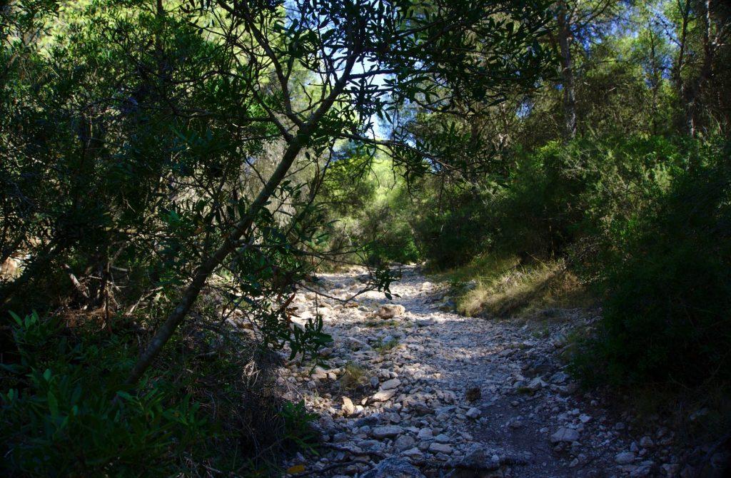 camino de rocas sueltas en el barranco de paco mañaco santa pola