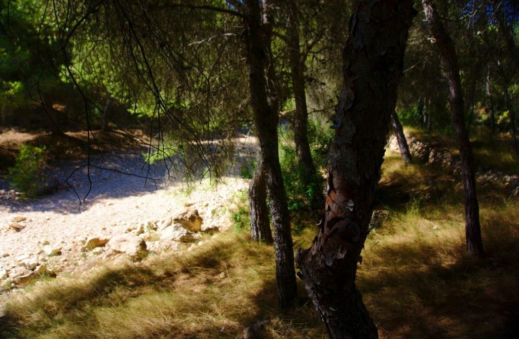 camino rocoso del barranco de paco mañaco santa pola