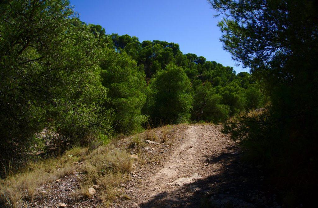 principio del camino por el barranco de paco mañaco santa pola