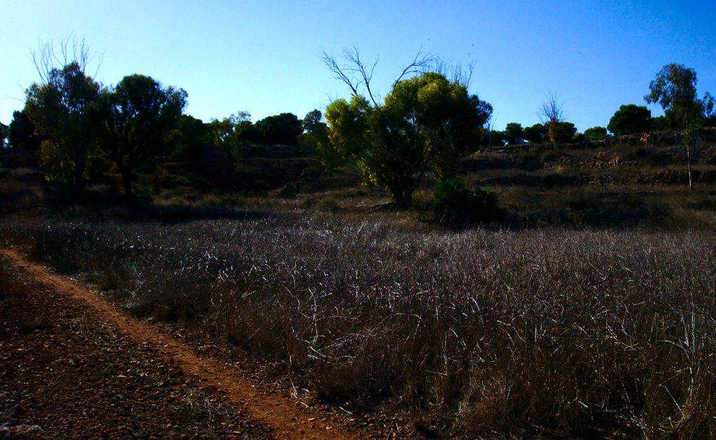 camino en el paraje de la fulla roja en la sierra de santa pola