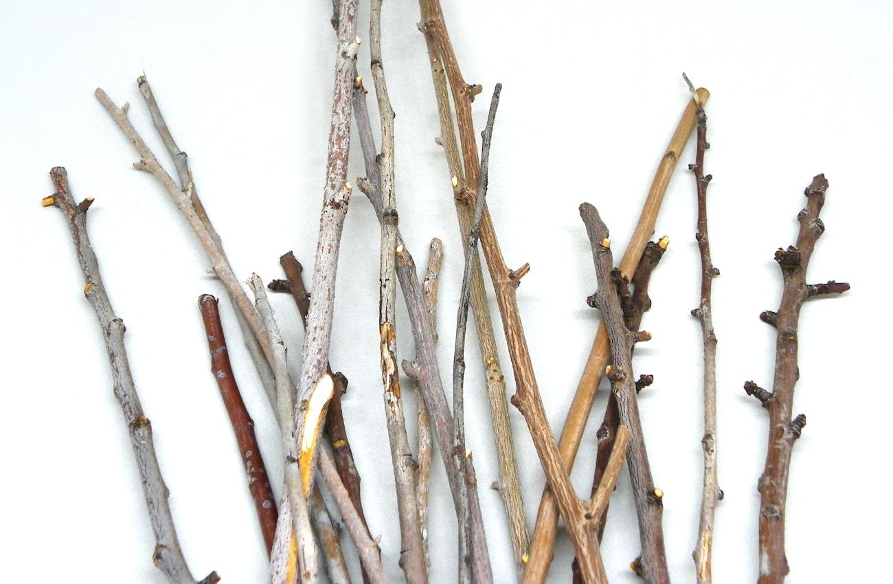ramas secas de diferentes tamaños para hacer soporte de centro de mesa1