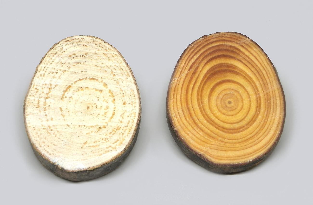dos rodajas de madera de pino sin nutrir y nutrida con cera y aceite de oliva