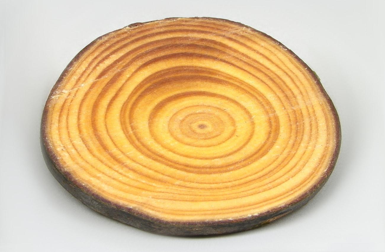 rodaja de madera nutrida con acera incolora y aceite de oliva