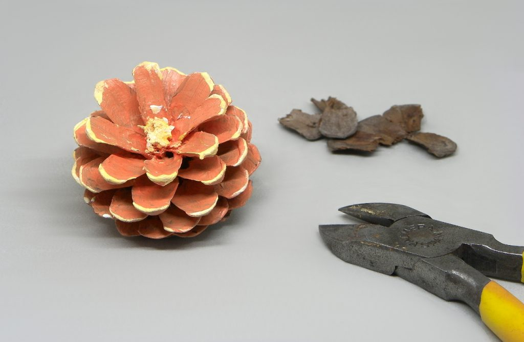 piña seca de pino pintada con pintyras acrilicas y sin escamas superiores