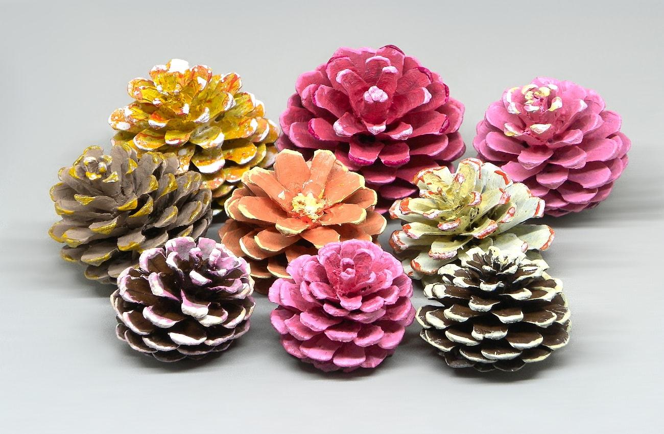 piñas secas de pino pintadas con pinturas acrilicas tonos pastel para hacer cuadro floral