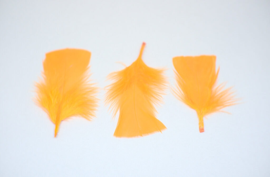 plumas para manualidades de color naranja